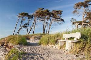 Fototapete Strand Ostsee : fototapete bank am weststrand prerow darss fischland ostsee pixers wir leben um zu ~ Frokenaadalensverden.com Haus und Dekorationen