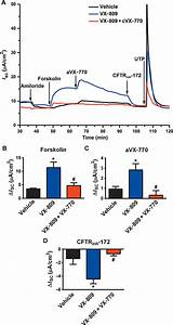 Potentiator ivacaftor abrogates pharmacological correction ...