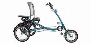 Elektro Trike Scooter : beotrend pfau tec scootertrike elektro dreirad 7 gang ~ Jslefanu.com Haus und Dekorationen
