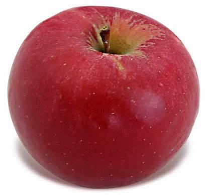Idared Apple Later Better Apples Lois Weeks