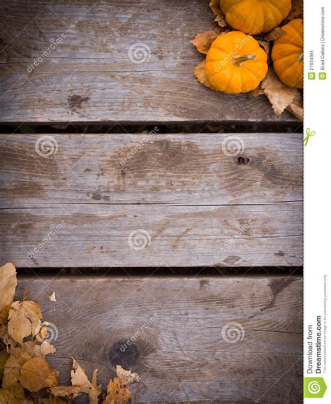fall harvest background stock image image  abstract