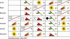 Calendrier Lunaire Jardinage : quand et comment faire ses semis page 2 ~ Melissatoandfro.com Idées de Décoration