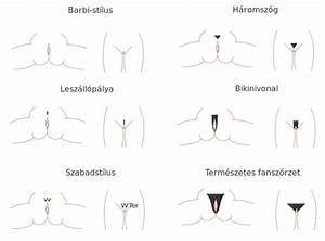 Womenquots Pubic Hairstyle Pictures
