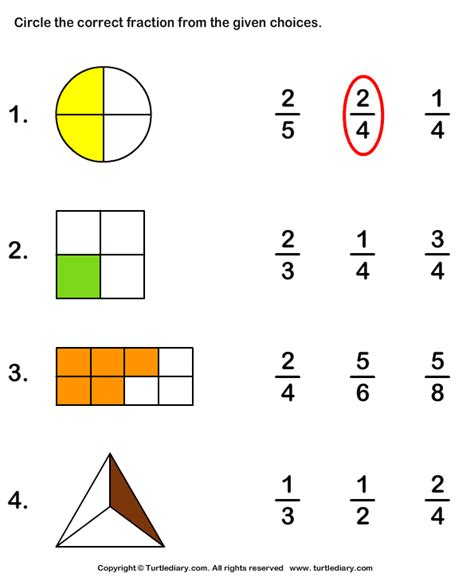 what fraction does the shape show turtlediary