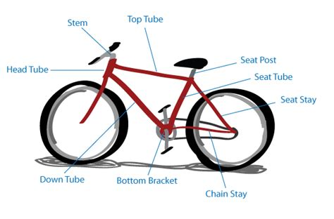 Bike Fit Rehabilitation Michigan State University