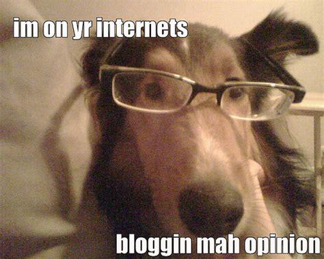 Die Besten Deutschen Hunde Blogger