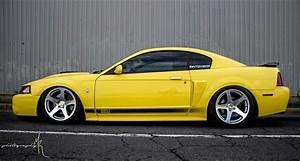 Slammed New Edge Mach 1 Mustang   Mustang cars, Sn95 mustang, Yellow mustang