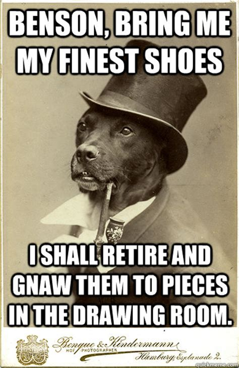 Benson Dog Meme - benson bring me my finest shoes i shall retire and gnaw them to pieces in the drawing room