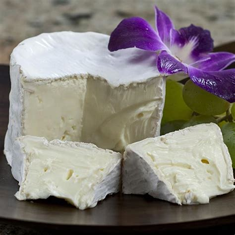 cuisine st andre andre cheese cheese