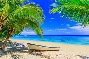 Bilder Von Palmen : karibik unter palmen kreuzfahrt zeitung ~ Frokenaadalensverden.com Haus und Dekorationen