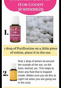 Essential Oils  Why I Took The Plunge And Joined The