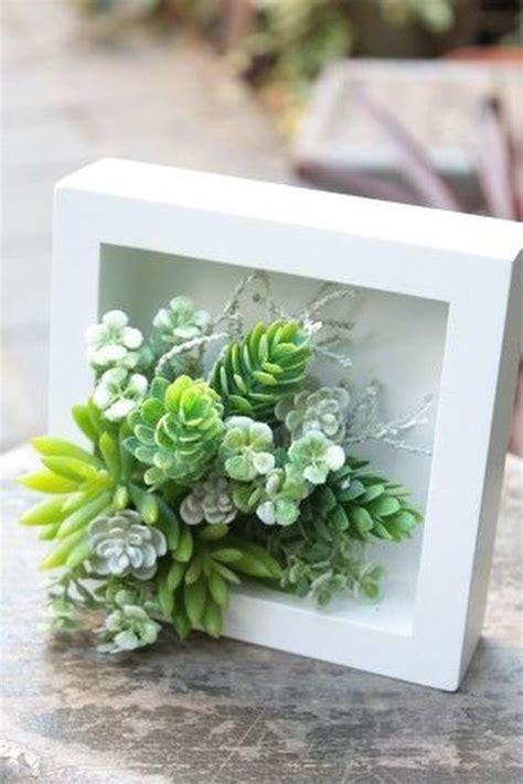 gorgeous succulent wall art  display houseplants