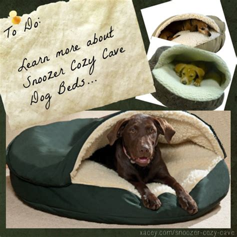 32877 snoozer cozy cave pet bed snoozer cozy cave beds reviews a listly list