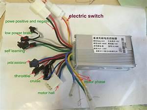 Wiring Diagram 350w Bldc