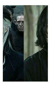 SparkLife » Harry Potter Characters That Would've Made Way ...