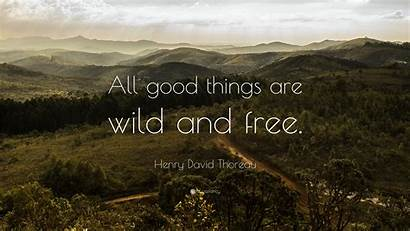 Wild Thoreau David Henry Quote Quotes Wallpapers