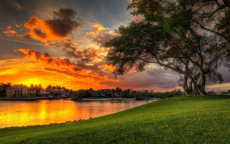 beautiful sunset red clouds villa lake coast green meadow tree palm water reflection desktop hd wallpaper  wallpaperscom