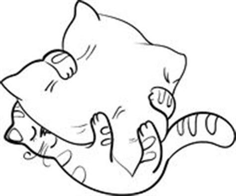 sta su cuscino piccolo gatto dorme sul cuscino fotografia stock