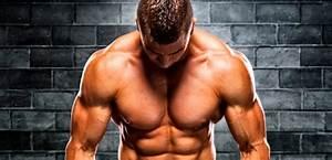 Image Homme Musclé : les muscles de la gonflette sont ils r els matthieu verneret ~ Medecine-chirurgie-esthetiques.com Avis de Voitures