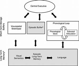 The, Multicomponent, Model, Of, Working, Memory, From, U0026quot, Is, Working, Memory