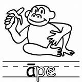 Clipart Ape Boardwalk Hail Coloring Template Clipartmag sketch template