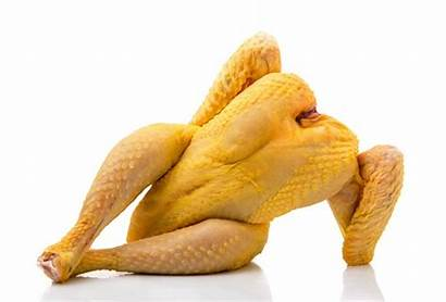 Chicken Raw Maybe Question Kind Different Impress