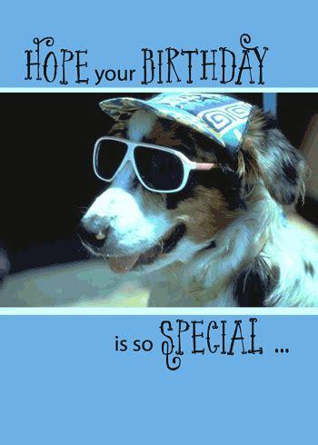 funny birthday dog  sunglasses  pets ecards greeting cards