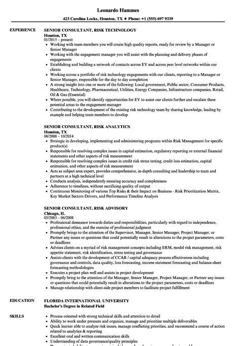 senior consultant risk resume sles velvet