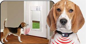 Automatic pet doors on sale today for Dog doors for sale