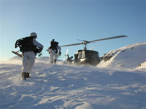 austrian armed forces information  english image