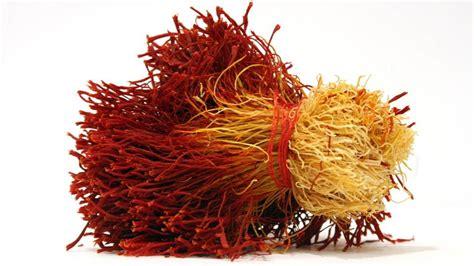 flower  health  magical benefits  saffron