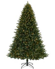 7 jackson fir tree with clear lights christmas tree market
