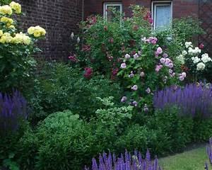 Welche Pflanzen Passen Gut Zu Hortensien : was pa t gut unter wei e 90 cm hochst mme page 2 mein sch ner garten forum ~ Heinz-duthel.com Haus und Dekorationen