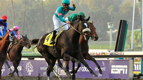 zenyatta breeders cup 2009 classic ladies racing magnificence victory after eclipse sportswire
