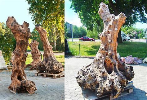 Holzskulpturen Für Den Garten by Musterhausausstellung Bei Leipzig Gartengestaltung Mit