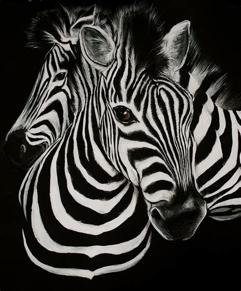 home design forum zebra backgrounds 4 wide background and wallpaper home