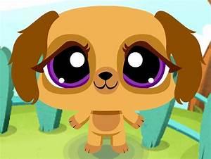 Littlest Pet Shop Online Images Pet Hd Wallpaper And