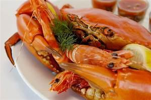 Brisbane's Best Seafood Restaurants Near the Sea - Brisbane