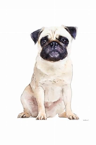 Pug Dog Animals Metal Feminine Noir Watercolor