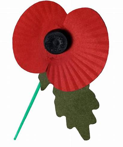 Poppy Transparent Remembrance Background Rememberance Poppie Graphics