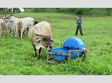 Sector agropecuario frente a grandes retos nuevamente • El