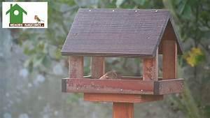 Mangeoire Oiseaux Sur Pied : mangeoire sur pied en bois pour oiseaux des jardins youtube ~ Teatrodelosmanantiales.com Idées de Décoration