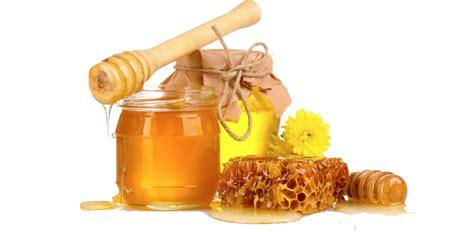 honey transparent png png mart
