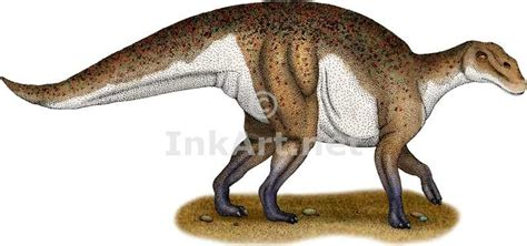 hadrosaurus pictures facts dinosaur