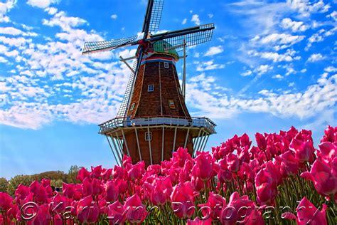 holland kari lynn photography