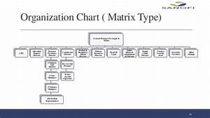 Sales Organisation Chart Sanofi Graduation Presentation