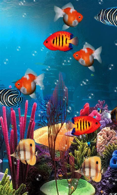 Animated Aquarium Wallpaper Gif - foto animada fish tropical