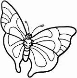 Butterfly Coloring Pages Printables sketch template