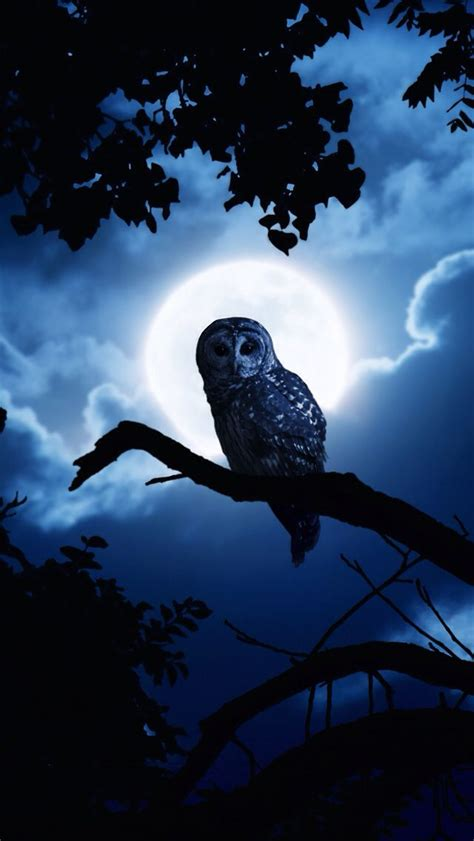 Owl Phone Wallpapers by 101 Iphone Wallpapers That Are Both Spooky Awesome