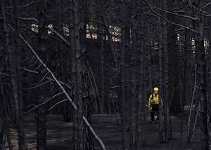 Aftermath Of Colorado U2019s Most Destructive Wildfire
